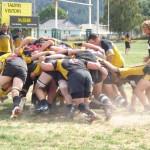 Rugby Te Kauwhata Village
