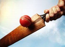 Te Kauwhata Cricket Club